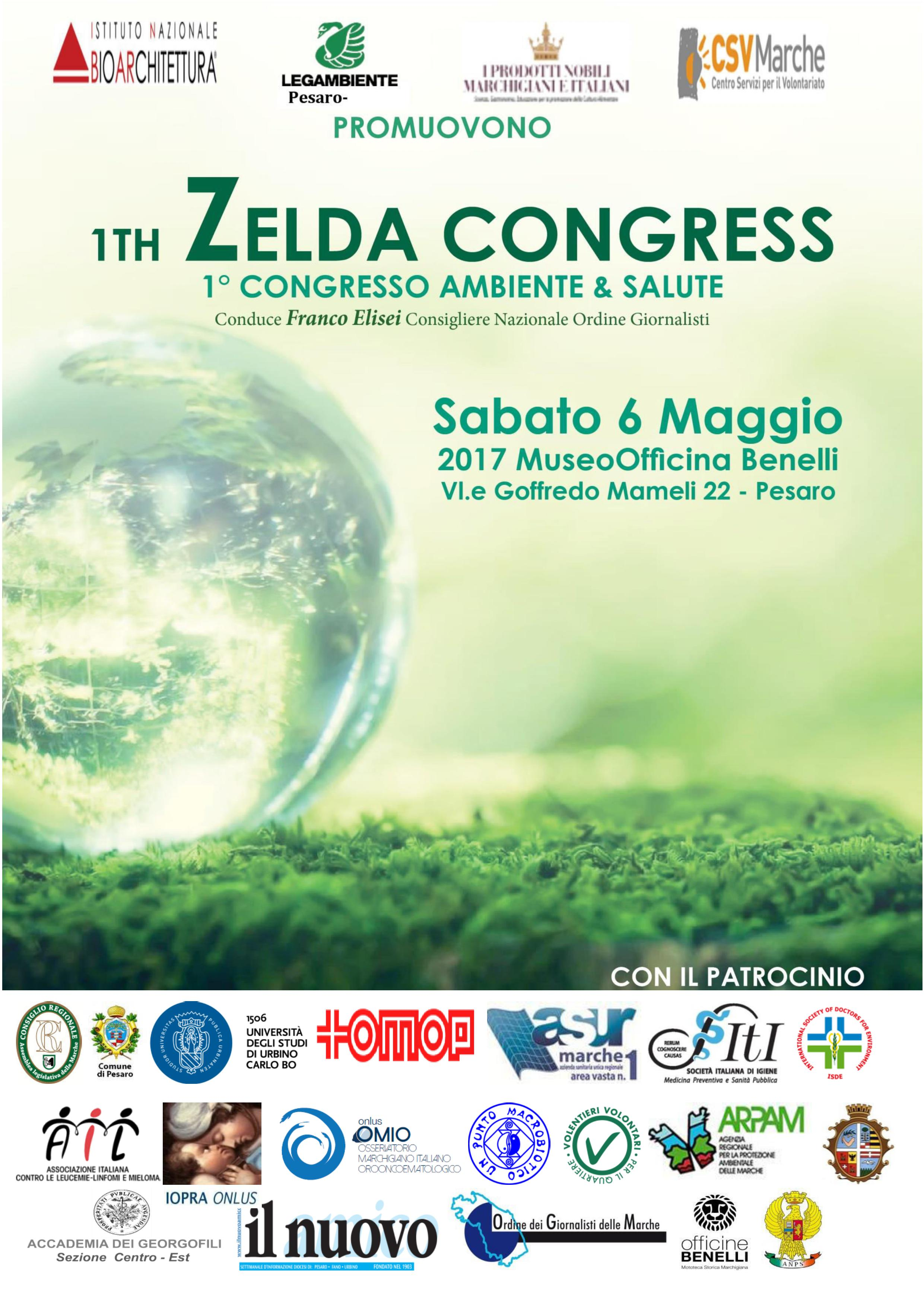 Zelda Congress
